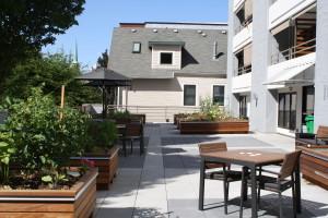 1200 Building Renovated Rooftop Garden