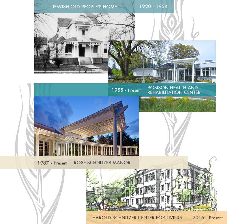History | Cedar Sinai Park